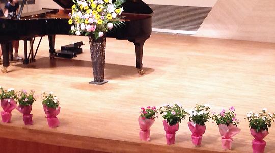 花鉢のステージ